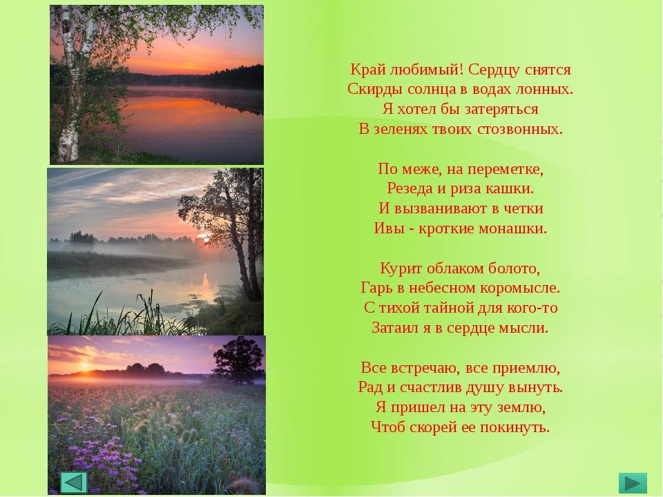 преуспел, стихи поэтов шатуры о природе шатуры коржи