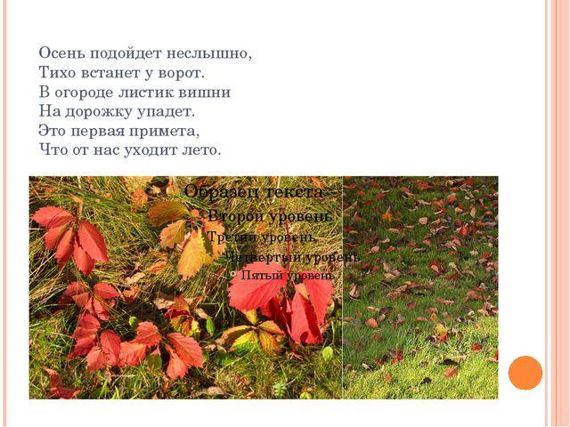 Осень подойдет неслышно, Тихо встанет у ворот. В огороде листик вишни На доро...