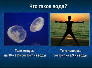 Что такое вода? Тело медузы на 90 – 95% состоит из воды Тело человека состоит