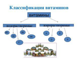 Классификация витаминов витамины водорастворимые жирорастворимые В2 В6 В5 А D