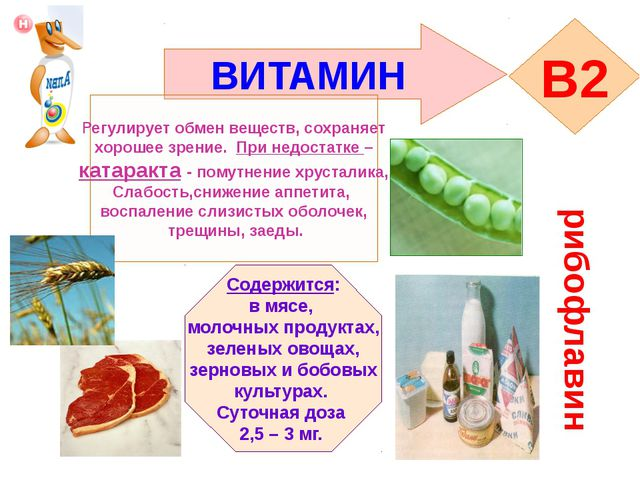 ВИТАМИН B2 рибофлавин Регулирует обмен веществ, сохраняет хорошее зрение. При...
