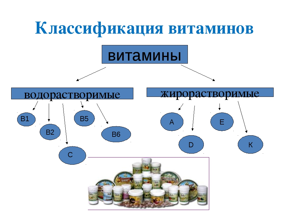 Классификация витаминов витамины водорастворимые жирорастворимые В2 В6 В5 А D...