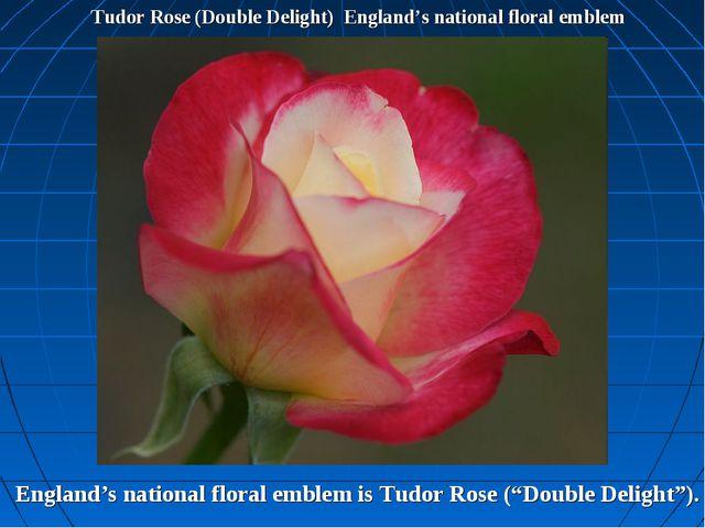 Tudor Rose (Double Delight) England's national floral emblem England's nation...