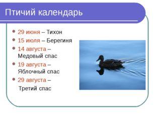Птичий календарь 29 июня – Тихон 15 июля – Берегиня 14 августа – Медовый спас