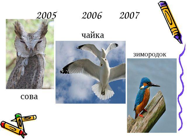 2005 2006 2007 сова чайка зимородок
