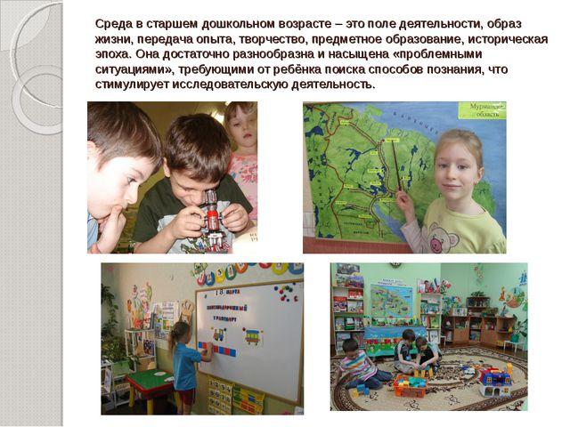 Среда в старшем дошкольном возрасте – это поле деятельности, образ жизни, пер...