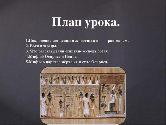 1.Поклонение священным животным и растениям. 2. Боги и жрецы. 3. Что рассказы...