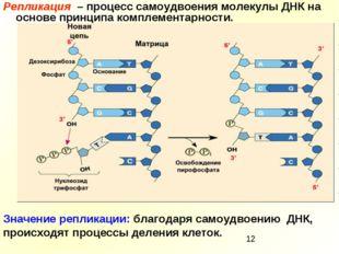 Репликация – процесс самоудвоения молекулы ДНК на основе принципа комплемента