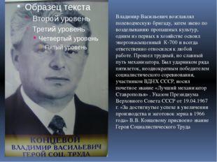 Владимир Васильевич возглавлял полеводческую бригаду, затем звено по возделы