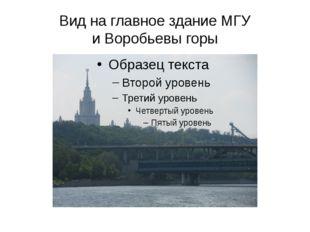 Вид на главное здание МГУ и Воробьевы горы
