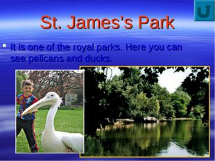 St. James's Park It is one of the royal parks. Here you can see pelicans and