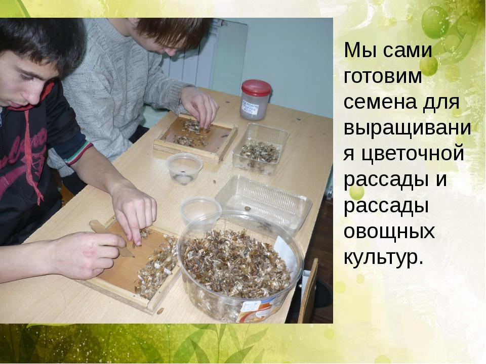 Мы сами готовим семена для выращивания цветочной рассады и рассады овощных к...