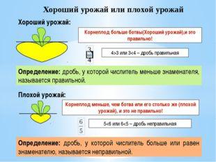 Хороший урожай или плохой урожай Плохой урожай: Корнеплод больше ботвы(Хороши