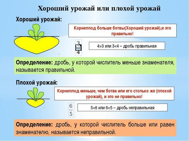 Хороший урожай или плохой урожай Плохой урожай: Корнеплод больше ботвы(Хороши...