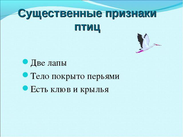 Существенные признаки птиц Две лапы Тело покрыто перьями Есть клюв и крылья
