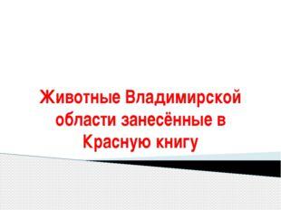 Животные Владимирской области занесённые в Красную книгу