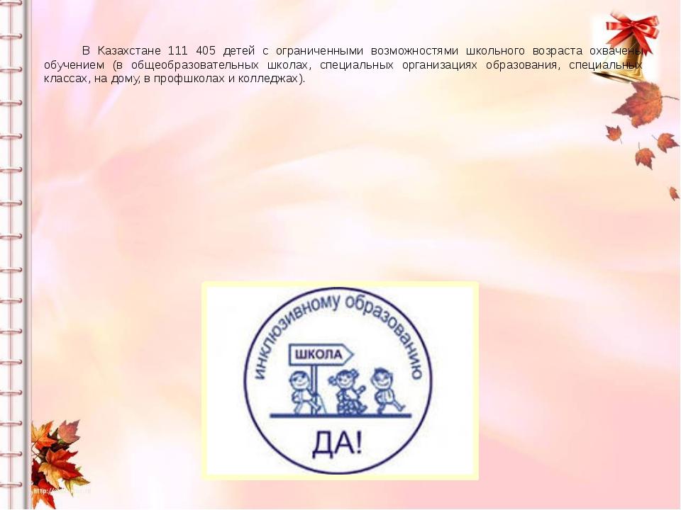 В Казахстане 111 405 детей с ограниченными возможностями школьного возраста...