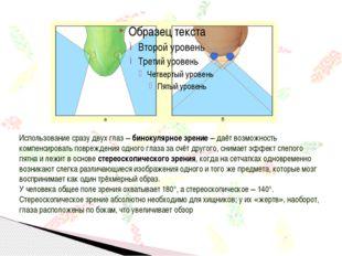 Использование сразу двух глаз – бинокулярное зрение – даёт возможность компен