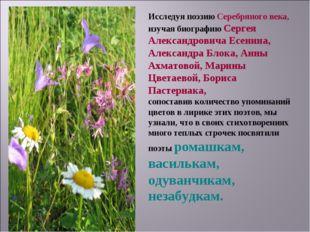 Исследуя поэзию Серебряного века, изучая биографию Сергея Александровича Есен