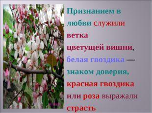Признанием в любви служили ветка цветущей вишни, белая гвоздика — знаком дове