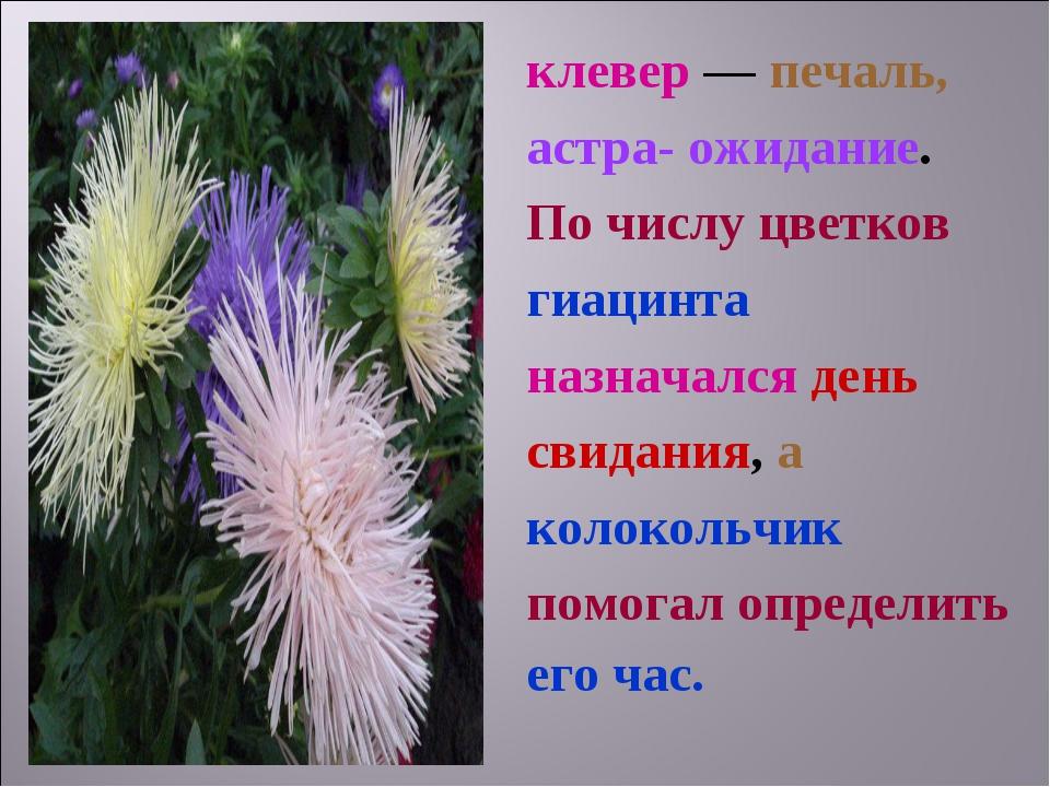 клевер — печаль, астра- ожидание. По числу цветков гиацинта назначался день с...