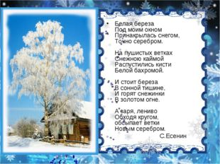 Белая береза Под моим окном Принакрылась снегом, Точно серебром. На пушистых