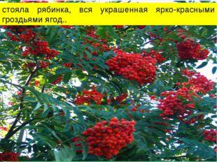 стояла рябинка, вся украшенная ярко-красными гроздьями ягод..