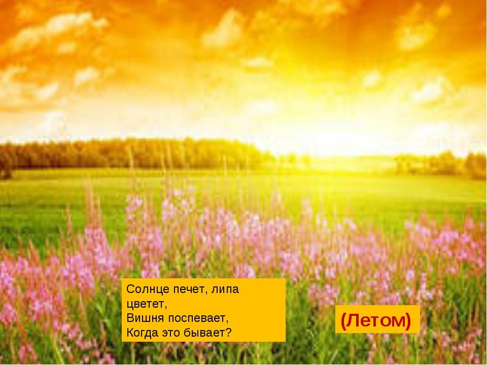 Солнце печет, липа цветет, Вишня поспевает, Когда это бывает? (Летом)