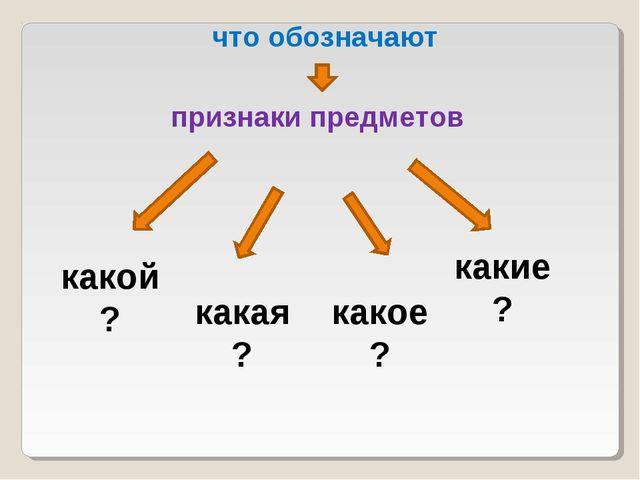 что обозначают признаки предметов какой? какая? какое? какие?