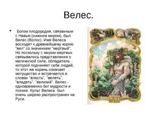 Велес. Богом плодородия, связанным с Навью (нижним миром), был Велес (Волос).