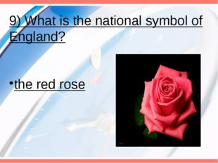 9) What is the national symbol of England? the red rose