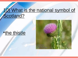 10) What is the national symbol of Scotland? the thistle