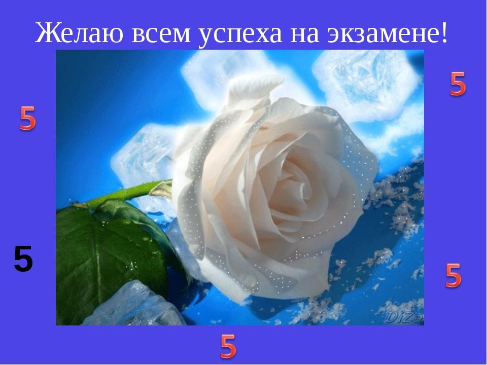 Желаю всем успеха на экзамене! 5