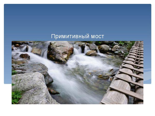 Примитивный мост