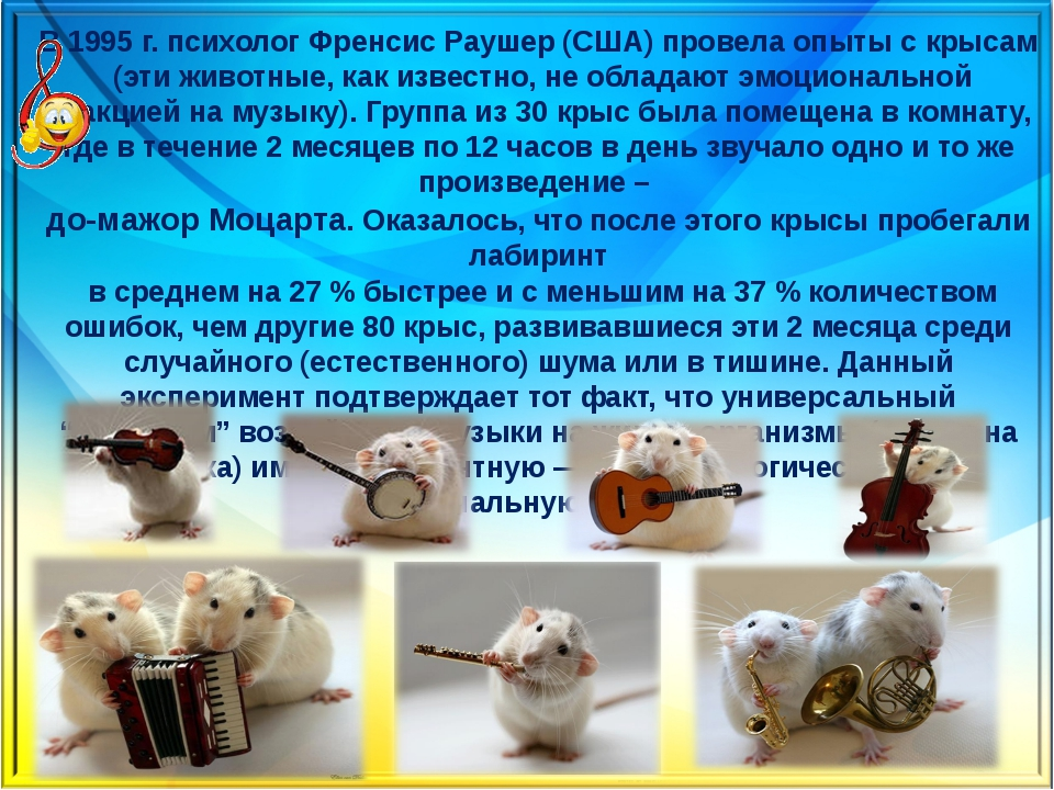 В 1995 г. психолог Френсис Раушер (США) провела опыты с крысам (эти животные,...