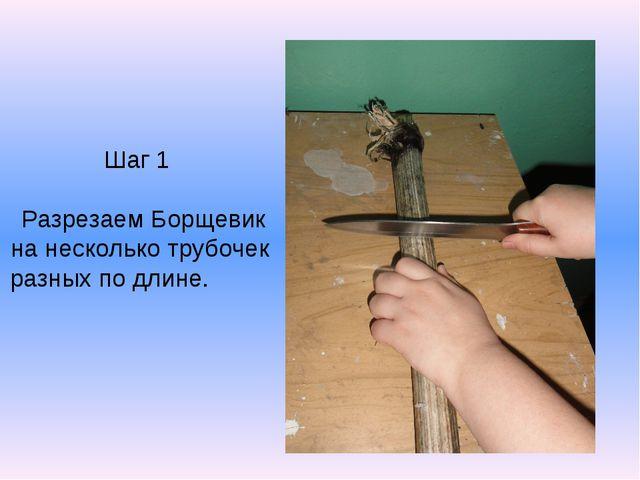 Шаг 1 Разрезаем Борщевик на несколько трубочек разных по длине.