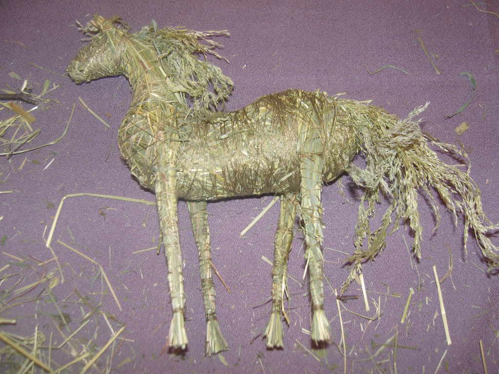 F:\лошадка ульяновой лизы\SNV82810.JPG