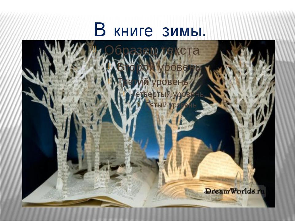 В книге зимы.