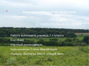 Орнитофауна полезащитных лесных полос Ставропольского края Работу выполнила у