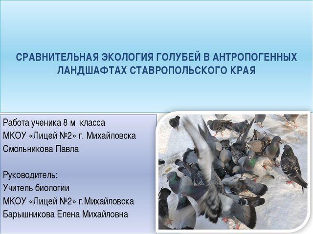 Работа ученика 8 м класса МКОУ «Лицей №2» г. Михайловска Смольникова Павла ...