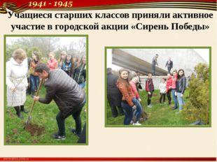 Учащиеся старших классов приняли активное участие в городской акции «Сирень П