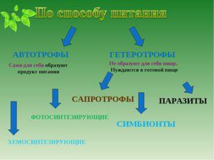 АВТОТРОФЫ ГЕТЕРОТРОФЫ ПАРАЗИТЫ СИМБИОНТЫ ФОТОСИНТЕЗИРУЮЩИЕ ХЕМОСИНТЕЗИРУЮЩИЕ