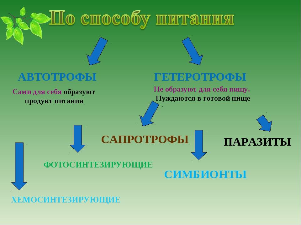 АВТОТРОФЫ ГЕТЕРОТРОФЫ ПАРАЗИТЫ СИМБИОНТЫ ФОТОСИНТЕЗИРУЮЩИЕ ХЕМОСИНТЕЗИРУЮЩИЕ...