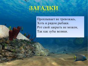 Проплывает не тревожась, Хоть и рядом рыбаки. Рот свой закрыть не можем, Так