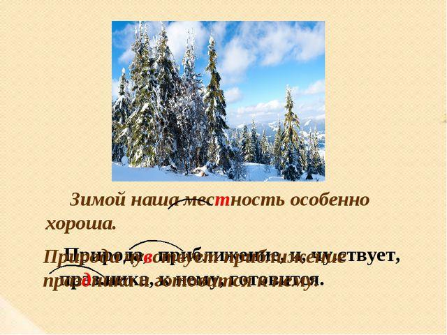 Зимой наша местность особенно хороша. Природа, приближение, и, чу.ствует, пра...
