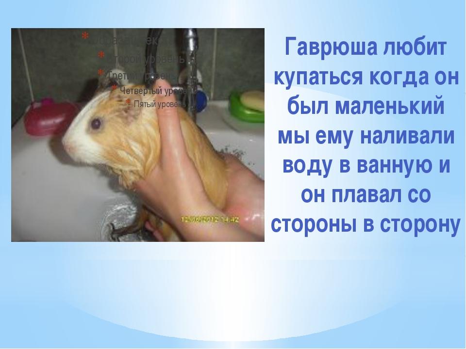 Гаврюша любит купаться когда он был маленький мы ему наливали воду в ванную и...