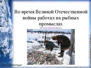 Во время Великой Отечественной войны работал на рыбных промыслах http://www.