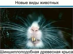 http://d3mlntcv38ck9k.cloudfront.net/content/konspekt_image/69772/e900acb0_1980_0131_0fb4_22000aa81b95.jpg