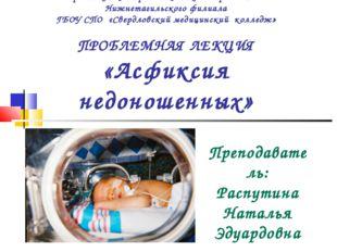 Ирбитский центр медицинского образования Нижнетагильского филиала ГБОУ СПО «С