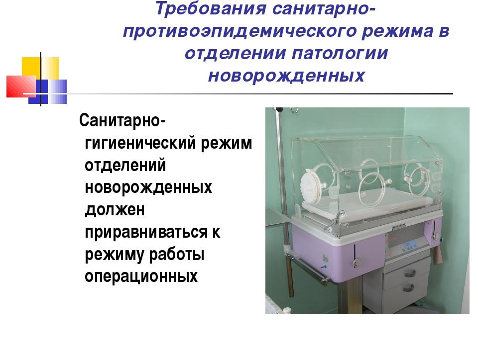 Требования санитарно-противоэпидемического режима в отделении патологии новор...